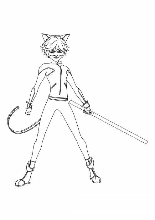 Cat Noir with a staff